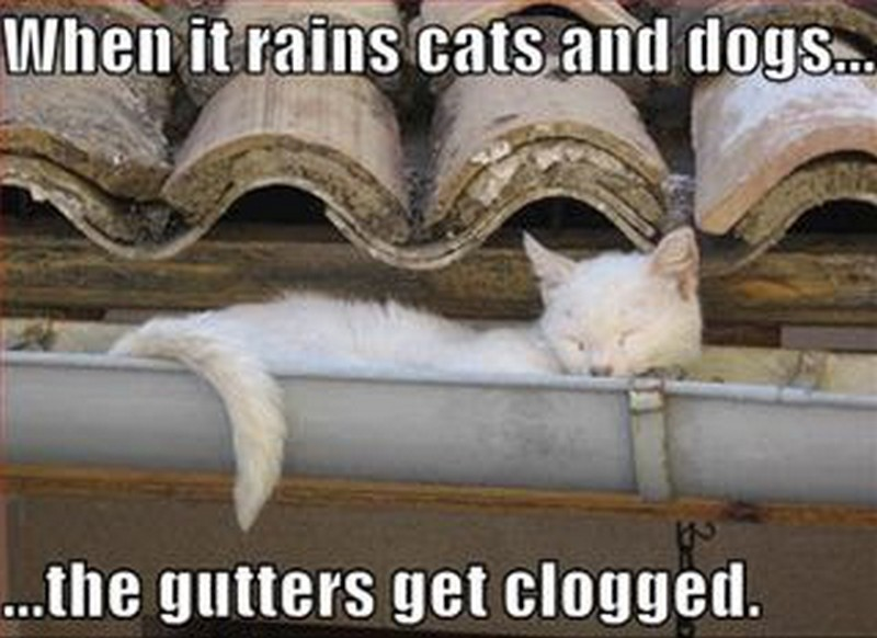 Gutter-Guards-Vancouver-WA